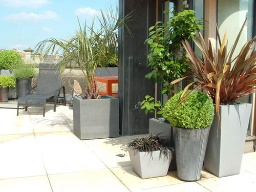 Green-garden-at-minimalist-space-in-your-house-or-apartment-rooftop