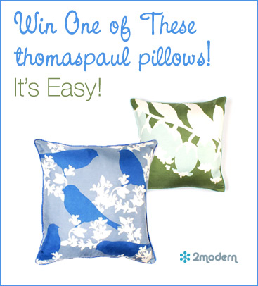 Win A thomaspaul Pillow – It's Easy!